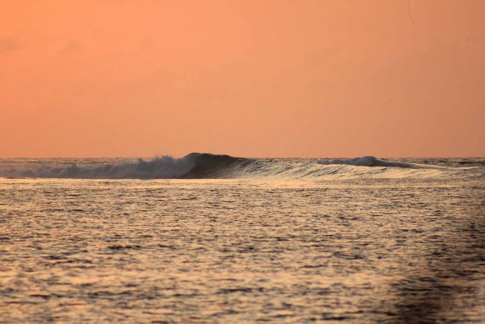 Rote Surf Dreams, Sri Noa Noa surf boat charter. Uncrowded surf. Sumba Surf Boat, Sumba Surf Charter, Sumba Surf, Indo Surf Charter, Rote Surf Charter, Lombok Surf Charter, Sumbawa Surf Charter, Small Surf Boat in Indonesia, Surf Charter in Indonesia, Surf Boat in Indonesia, Surf Charter Sumba, Surf in Sumba, Surf in Rote, Surf Charter Rote, Surf Boat Rote, Surf Charter Indo, Surf Boat Indo, Surf Charter, Indonesia Boat Trip, surf boat trips indonesia, surf boat trips bali, surfing boat tours, boat surf trips indonesia, boat trip indonesia surf, indo boat surf trips, surf boat charter, indonesia surf trip boat, best surf boat trips, indonesia surf boat trips, boat trips indo, indonesia surf trip cost, surf boat charters, boat trips indonesia, indo boat trips, surf mentawais boat trip, indo surf boat trips, indonesian surf charters, indo surfing trips, indo surf charter, surfing trips indonesia, indonesia surf holiday, surf charter boat